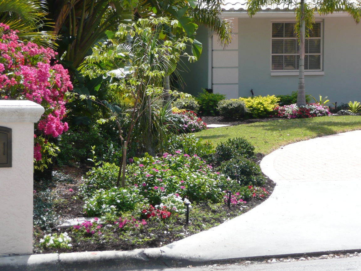 Florida-Friendly Landscape - Florida-Friendly Landscape Collier Soil And Water Conservation
